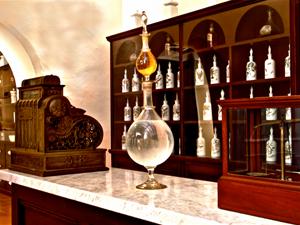 Museo de la Farmacia y la Familia del Siglo XIX